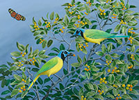 "Green Jays with Isabella's Heliconia / Oil on Canvas / 21"" x 28"""